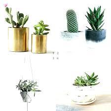 decorative indoor plants indoor plant holders hanging plant pots indoor plant pots indoor