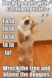 Meme Kitty - happy kitty christmas tunes owned com