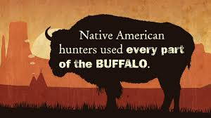 the buffalo and native americans video native american cultures