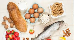 food intolerance test dubai fit 220 exec wellness for aed 1 600