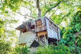 miami fl tree house accommodations