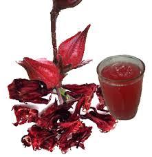 Teh Merah teh merah bunga rosella apotek jual aneka produk herbal