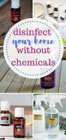 Cleaning Tips For Home 620 best cleaning tips for home images on pinterest cleaning