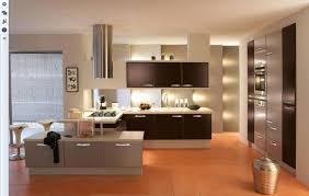 Interior Designed Kitchens Decoration Interior Kitchen Designs