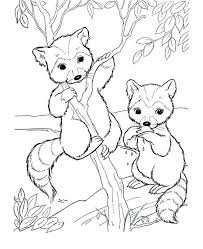 coloring pages cartoon animals cartoon sea animal coloring pages