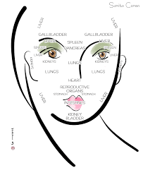 Face Mapping Acne How Chinese Face Mapping Reveals Hidden Messages In Skin Sarita