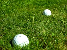 file two golf balls on grass jpg wikimedia commons