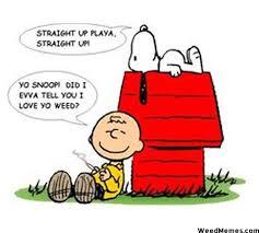 Funny Meme Cartoons - brown loves snoopy s weed cartoon 420 memes