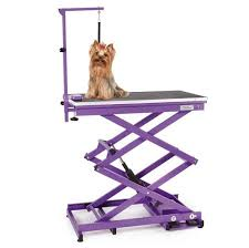 Pet Grooming Table by How To Select The Right Grooming Table Petedge