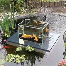 flying aquarium fish observatory noveltystreet