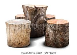 Stump Chair Stumps Stock Images Royalty Free Images U0026 Vectors Shutterstock
