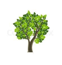 tree icon nature vector symbol stock vector colourbox