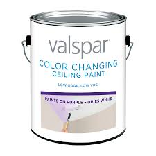decorative paint for ceilings interior low odor valspar