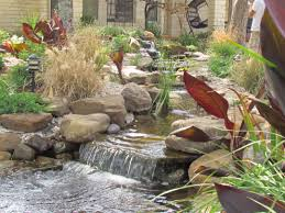 koi pond u0026 pondless waterfall prices for central texas by