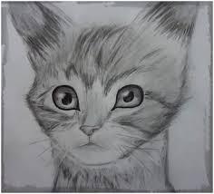 imagenes a lapiz de gatos dibujos de gatos hechos a lapiz de grafito dibujos de gatos