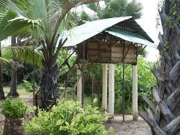 Treehouse Nz Kartong Tree House Rental Deluxe Treehouse In Gambia