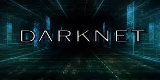 Light Cyber Ice Investigators Expose Darknet Criminals To The Light Ice