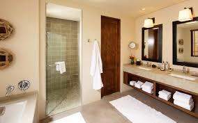 bathroom interior as vanity also doorless shower room and huge