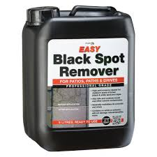How To Remove Lichen From Patio Azpects Easy Black Spot Remover