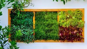 Vertical Garden Ideas Vertical Garden Ideas How To Grow Vegetables In A Vertical Garden