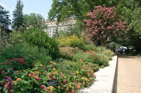 Botanical Garden Internship Smithsonian Gardens 2017 Winter Internship Opportunities