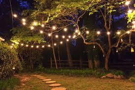 Clear Patio String Lights 25 G40 Clear Patio String Lights On Green Wire Outdoor String
