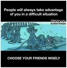 Internet Friends Meme - choose your friends wisely sarcastic meme pmslweb