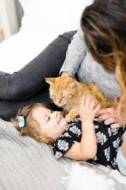 5 tips for the best kid pet photos and a simple cat toy diy