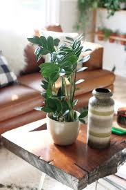Cute Plant by Plant Stand Withaller Legs Would Really Cute Sideableoo Diy