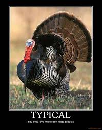 Thanksgiving Turkey Meme - 31 funny thanksgiving pictures cartoons and memes