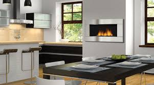 Contemporary Gas Fireplace Insert by Gas Fireplaces Cincinnati Chimney Works U0026 Rocky Mountain Stoves