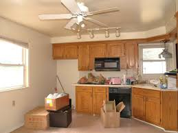 Ideas For Kitchen Ceilings Kitchen Interesting Kitchen Ceiling Fans For Modern Kitchen Design