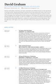 splendid ideas web developer resume examples 16 freelance web