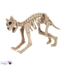 Ebay Halloween Props Halloween Dog Cat Rat Bird Skeleton Decoration Animal Bones Prop