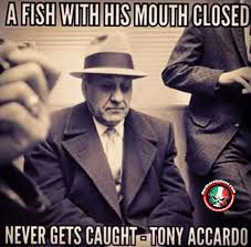 Meme Awesome - teddy roosevelt quotes awesome a fish with his mouth closed never