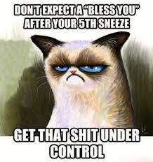 Sneeze Meme - don t expect a bless you after your 5th sneeze get that shit under