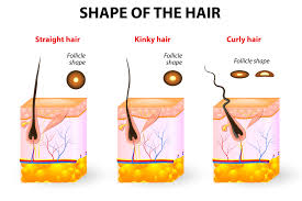 sleek and pubic hair and lifestyle and ingrown hairs here s exactly why we get ingrown hairs down there and how to