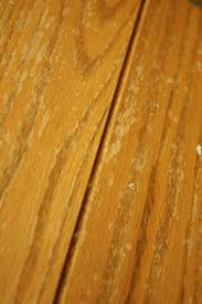 remove paint from kitchen cabinets remodell your home decoration with best awesome removing paint