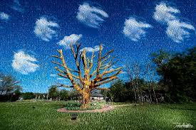 buena vista township the tree monument