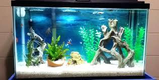 fish aquarium decorations cheap best gallon fish tank aquarium 5 0