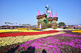 xinshe sea of flowers taichung tourism