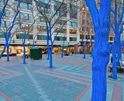 blue trees installation coming to sacramento the city