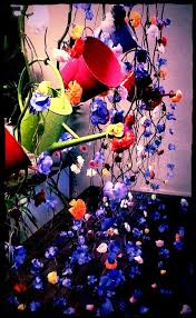 Easter Decorations For Shop Windows by Best 25 Florist Window Display Ideas On Pinterest Flower Shop