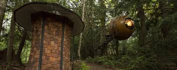 trazee travel stay in a tree house for adults with free spirit