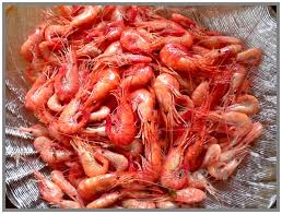 comment cuisiner les crevettes congel馥s cuisson et conservation de la crevette bouquet cahier gourmand