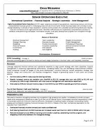 business development resume examples best photos of resume examples 2013 resume format 2013 examples best marketing resume examples