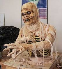 Halloween Mummy Costumes 428 Halloween Mummy Ideas Images Haunted