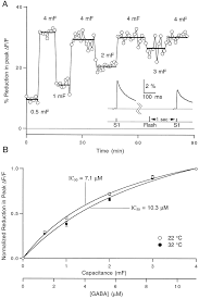 mechanism and kinetics of heterosynaptic depression at a