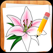 How To Draw A Vase Of Flowers Coloring Page How Todraw A Flower How To Draw A Flower Simple
