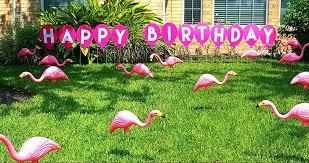 2 locations directory flamingos 2 go
